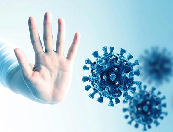 Panabiotics Immunabwehr